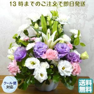 ◆クール便でお届け致します、利用料350円を送料として加算させていただきます。  H=約35cmW=...