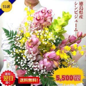 生花 花束 洋ラン シンビジューム使用 クリスマスプレゼント 誕生日 記念日