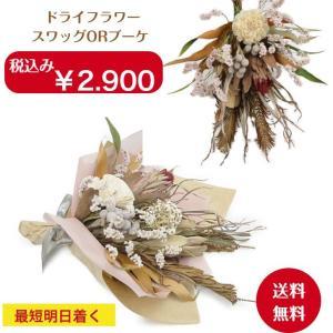 ミニ 花束 スワッグ人気品種ドライフラワー 7種類使用 グレヴィリアゴ−ルド  パンパスグラス アイバンホー ポプルス等々