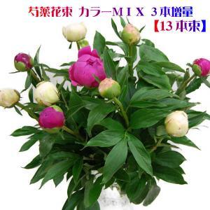 母の日 花 2018  芍薬 花束 母の日 送料無料 シャクヤク しゃくやく