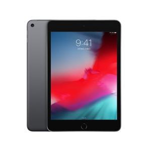 Apple iPad mini Wi-Fi 64GB 2019年春モデル MUQW2J/A [スペースグレイ](2100000013226)