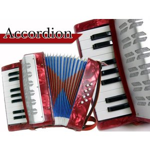 小型アコーディオン★音楽会・学芸会 ###アコーディオン104###|ai-mshop