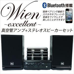 最新型Bluetooth搭載 真空管アンプ 真空管プリメインアンプ&スピーカーセット ハイブリッドアンプ アナログサウンド ###アンプステレオ2060###|ai-mshop