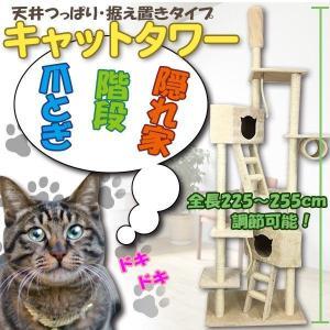 大型 猫顔BOX 突っ張りキャットタワー ネコタワー 225〜255cm オシャレ ジャングルジム ###キャットタワー020-B###|ai-mshop