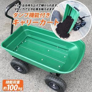 ダンプカート ガーデンカート キャリーカート ワゴン 耐荷重100kg ガーデニング 台車 ###ワゴンTC4253S### ai-mshop