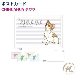 ポストカード チワワ ネコポス発送OK!【配送区分:P】|aiboshi