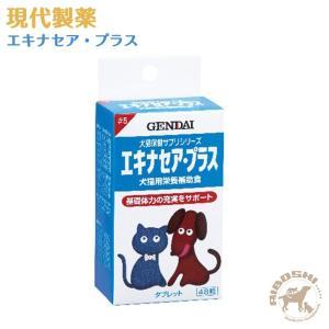 現代製薬 エキナセア・プラス 【配送区分:P】|aiboshi
