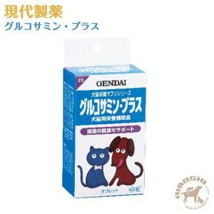 現代製薬 グルコサミン・プラス 【配送区分:P】|aiboshi