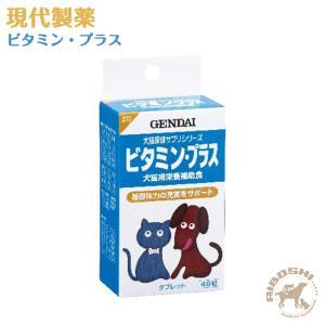 現代製薬 ビタミン・プラス 【配送区分:P】|aiboshi