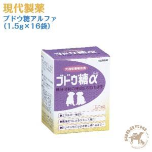 現代製薬 ブドウ糖アルファ(1.5g×16袋) 【配送区分:P】|aiboshi