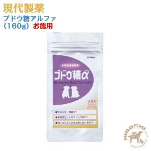 現代製薬 ブドウ糖アルファ(160g)徳用 【配送区分:P】|aiboshi