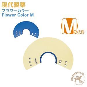 現代製薬 フラワーカラー/Mサイズ|aiboshi