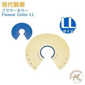 【現代製薬】フラワーカラー/LLサイズ【エリザベスカラー】【配送区分:P】|aiboshi