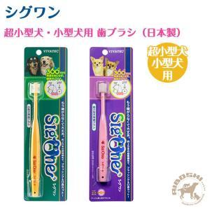 シグワン sigone 超小型犬用 小型犬用 歯ブラシ 360° 【ネコポス可】【配送区分:P】 aiboshi