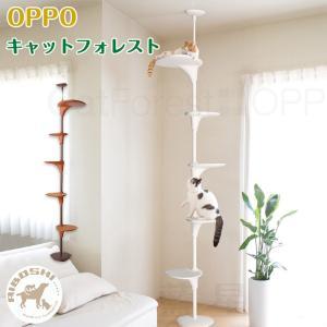 【特徴】猫の成長に合わせてステップの向きや高さを変えられる自由度の高い猫用遊具。付属の工具を使ってス...