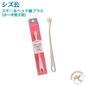 シズ公 スモールヘッド歯ブラシ(小〜中型犬用) 【配送区分:P】 aiboshi