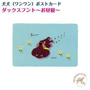 【犬犬(ワンワン)ポストカード】ダックスフント〜お昼寝〜【配送区分:P】|aiboshi