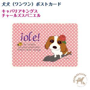 【犬犬(ワンワン)ポストカード】キャバリアキングスチャールズスパニエル【配送区分:P】|aiboshi