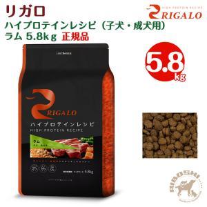リガロ RIGALO グレインフリー ハイプロテイン/ラム(5.8kg) 【配送区分:P】|aiboshi