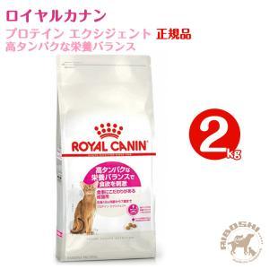 ロイヤルカナン 1〜10歳までの食事にこだわりがある猫用 プロテイン エクシジェント 高タンパクな栄養バランス(2kg)【配送区分:W】|aiboshi