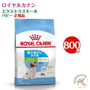 ロイヤルカナン ROYALCANIN エクストラスモール パピー(800g)【配送区分:W】|aiboshi