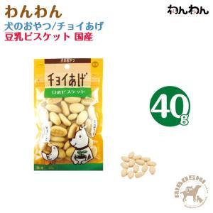 【チョイあげ】犬のおやつ/豆乳ビスケット(40g) 【配送区分:P】|aiboshi