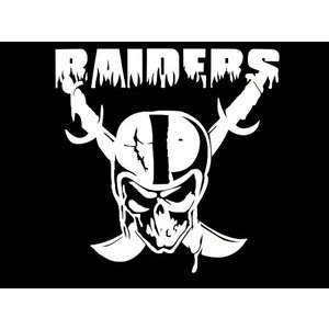 カッティングステッカー RAIDERS×スカル レイダース 車 バイク アメリカン ロゴマークスカルデカール|aicamu