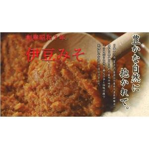 伊豆みそ業務用・粒みそ20Kg 品番(0102020)伊豆フェルメンテ|aida-sangyo
