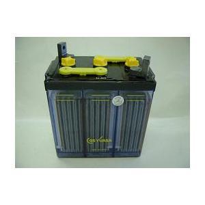 受注生産・HS-40-6E(C)(6V40Ah)触媒栓付・GSユアサ据置鉛蓄電池(miya)(注)本製品は受注生産品ためご注文の時、銀行振込みとなります。|aida-sangyo
