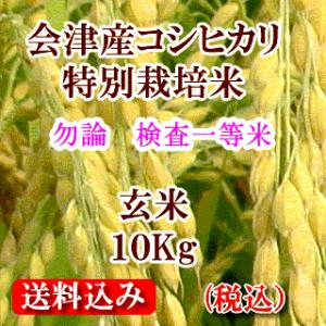 令和元年 福島県会津産コシヒカリ(特別栽培米) 玄米10kg(精米無料)|aidunomegumi