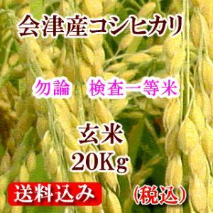 令和元年 福島県会津産コシヒカリ 玄米20kg(精米無料)|aidunomegumi