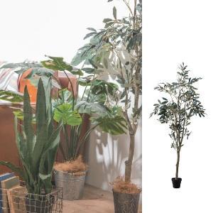 法人様限定 メーカー直送 代引不可 同梱不可 返品不可  人工観葉 人工観葉植物 フェイクグリーン オリーブツリー aifa
