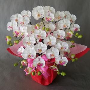 胡蝶蘭S 白 5本立 (高さ50cm巾40cm)オリジナル、光触媒、造花,誕生日祝、結婚祝、開店祝、...