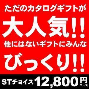カタログギフト STチョイス50600円コース(送料無料/20%割引・名入れ)(グルメ 旅行 内祝い 出産内祝い 出産祝い 結婚内祝い オリジナルBOX対応 お返し)|aikuru
