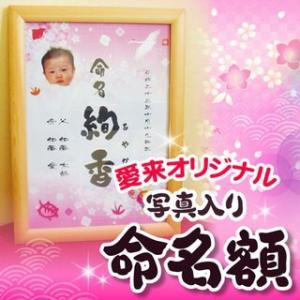 業界初 NEW 送料無料 選べるデザイン  写真・名前入り 選べるデザイン 写真・名前入り 「健幸祈願 命名額」 メッセージカード対応可|aikuru