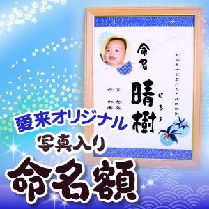業界初 NEW 送料無料 選べるデザイン 写真・名前入り 「健幸祈願 命名額」GA−07ゴールド メッセージカード対応可|aikuru