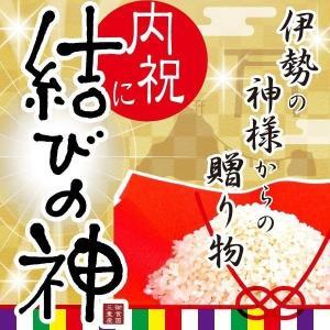 結びの神-5kg(送料無料)(内祝い/出産内祝い/お返し/ギフト/結婚内祝い/贈答品)|aikuru
