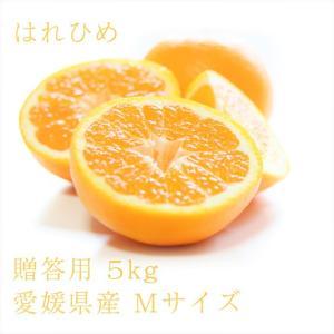 はれひめ おいしい みかん 愛媛 中島産 フルーツ 柑橘 贈答用 M5kg 送料無料|ailine