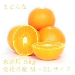 まどんな おいしい みかん 愛媛 中島産 フルーツ 柑橘 家庭用 5kg 送料無料|ailine