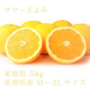 サマーきよみ おいしい みかん 愛媛 中島産 フルーツ 柑橘 家庭用 5kg 送料無料|ailine