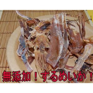 扇屋 噛みなさいまるごと焼きいか 72g(するめいか)|aimu