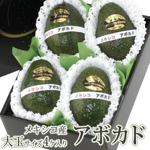 アボカド  フルーツ くだもの 果物 父の日 母の日【アボカド(プロミッチゴールド)(メキシコ産) 4個入】|aino-kajitu