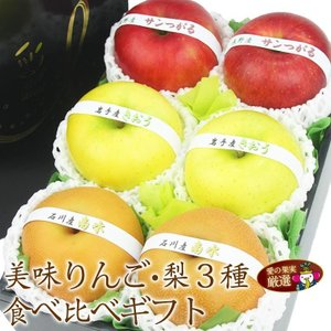 【旬の 美味 赤りんご&青りんご&和梨 食べ比べ ギフト】リンゴ 林檎 梨 フルーツ くだもの 果物 敬老の日 お彼岸 残暑見舞い|aino-kajitu