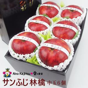 リンゴ 林檎 フルーツ 果物 くだもの 父の日 お中元【厳選 美味 赤 りんご ギフト (大玉 6個入) サンふじ または ふじ】|aino-kajitu