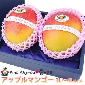 フルーツ 果物 くだもの 子供の日 端午の節句 母の日 父の日【アップルマンゴー(3L〜4Lサイズ 2個セット) 】|aino-kajitu