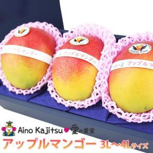 フルーツ 果物 くだもの 子供の日 端午の節句 母の日 父の日【アップルマンゴー(3L〜4Lサイズ 3個セット) 】|aino-kajitu