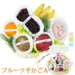 【季節のフルーツ平かご盛 ギフト A】フルーツ 果物 くだもの 敬老の日 お彼岸 残暑見舞い|aino-kajitu