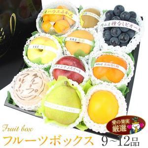 ブドウ フルーツ くだもの 果物 七五三【送料無料】【季節の フルーツ ボックス(黒ぶどう入)】|aino-kajitu