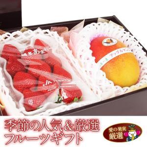 イチゴ 苺 果物 くだもの 子供の日 端午の節句 母の日 父の日【送料無料】【季節の 人気&厳選 フルーツ ギフト あまおういちご アップルマンゴー 】|aino-kajitu