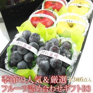 ぶどう リンゴ 林檎 フルーツ くだもの 果物【季節の 人気&厳選 フルーツ 詰め合わせ ギフト B3(種なし巨峰2房・旬の赤りんご2個・旬の青りんご2個)】 aino-kajitu
